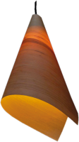 Lampyridae - Ash wood lamp