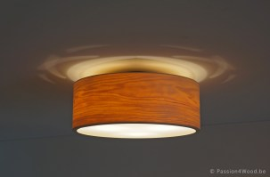 Passion 4 Wood Lighting - appartment - glow - drum - carillon - 5