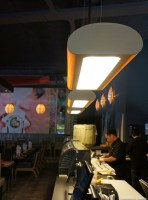 Shabu shabu rotterdam - tube - glow and lotus lights in ash and toulip wood.jpg